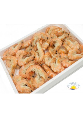 LANGOST. COCIDOS 48/58 5*800GR.